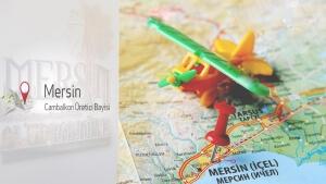 تصميم مواقع انترنت ويب تركيا اسطنبول متجر الكتروني تسويق الكتروني سيو استضافة مواقع تصميم مواقع في مرسين